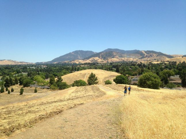 Golden Hills of California and Mount Diablo